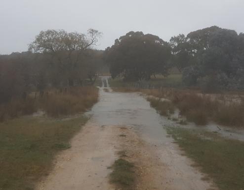 wet_driveway